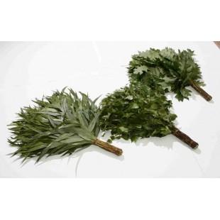 Веники для бани и сауны из эвкалипта, дуба и берёзы (упакованный)